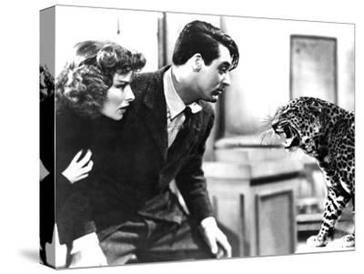 Bringing Up Baby, Katharine Hepburn, Cary Grant, Baby The Leopard, 1938
