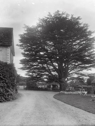 Brinsop Court-Frederick Henry Evans-Photographic Print