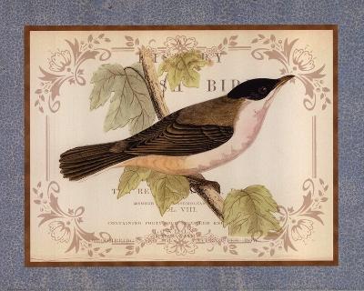 British Birds IV--Art Print