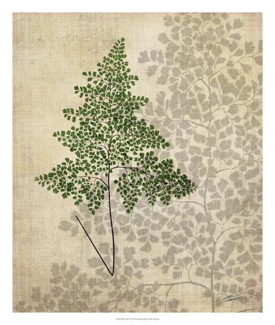 British Ferns I-John Butler-Giclee Print
