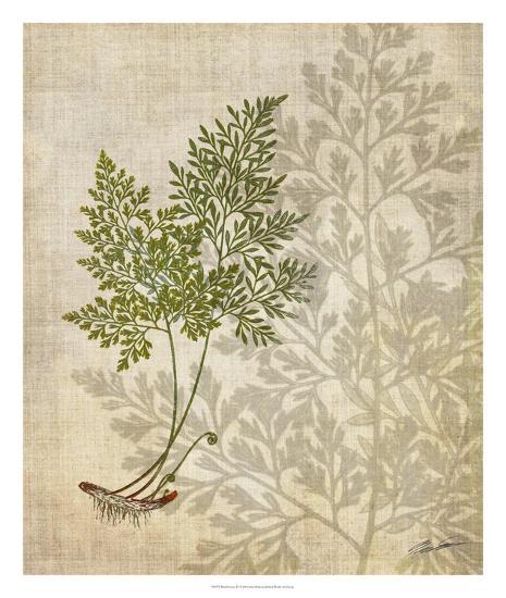 British Ferns IV-John Butler-Giclee Print