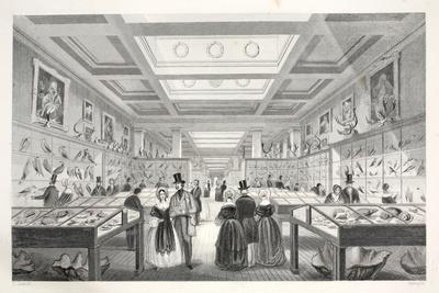 British Museum-Thomas Hosmer Shepherd-Giclee Print