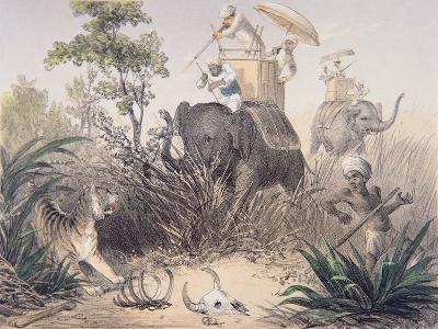 British Officers Tiger Shooting in India, 1860s--Giclee Print