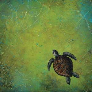 Slow and Steady by Britt Hallowell