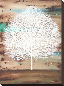 The Aurora Watcher by Britt Hallowell