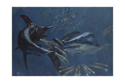 Broadbill, Mako and Sea Arrows, New Jersey, 1988-Stanley Meltzoff-Giclee Print