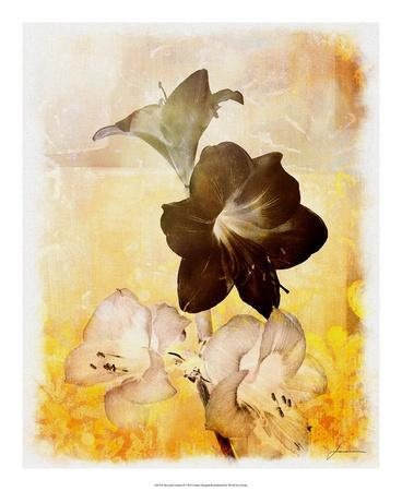 https://imgc.artprintimages.com/img/print/brocade-garden-ii_u-l-f7mk250.jpg?artPerspective=n