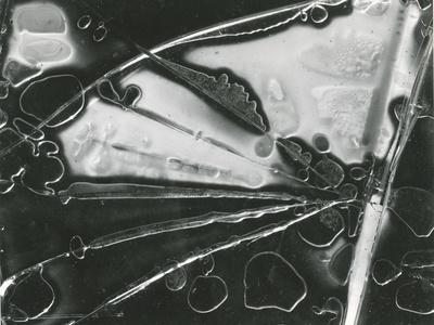 https://imgc.artprintimages.com/img/print/broken-glass-1954_u-l-q1g6wgo0.jpg?p=0