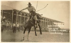 Bronco Buster, Bert Sibberton