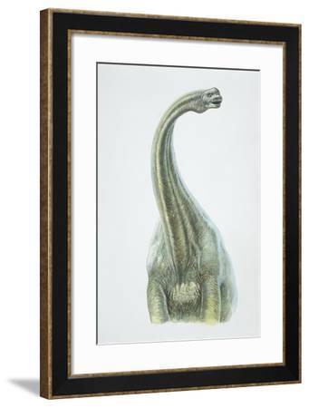 Brontosaurus, Jurassic Period--Framed Giclee Print