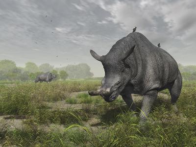 Brontotherium Wander the Lush Late Eocene Landscape-Stocktrek Images-Photographic Print