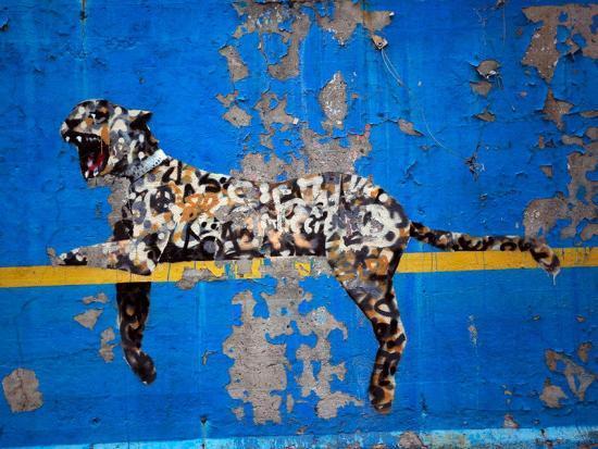 Bronx Zoo-Banksy-Giclee Print