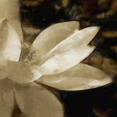 https://imgc.artprintimages.com/img/print/bronze-lily-iv_u-l-q11aufa0.jpg?p=0
