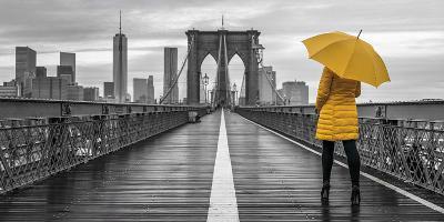 Brooklyn Spotlight-Assaf Frank-Giclee Print