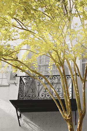 City Romance Yellow and Grey