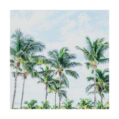 Southern Palms