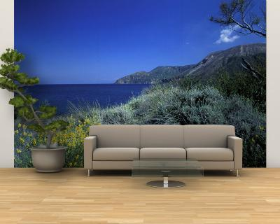 Broom Flowers and the Mediterranean Sea, Sicily, Italy-Michele Molinari-Wall Mural – Large