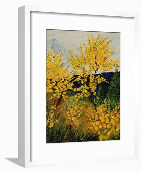 Brooms Shrubs-Pol Ledent-Framed Art Print