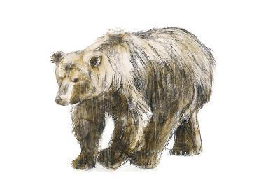 Brown Bear 1-Brenna Harvey-Premium Giclee Print
