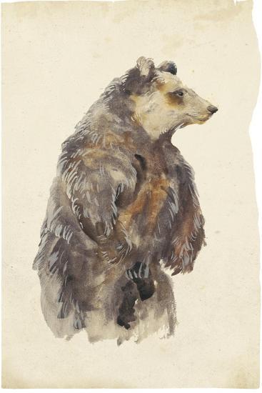 Brown Bear Stare II-Melissa Wang-Art Print