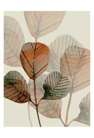 https://imgc.artprintimages.com/img/print/brown-leaves-1_u-l-f93swp0.jpg?artPerspective=n