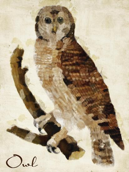 Brown Owl-Mindy Sommers-Giclee Print