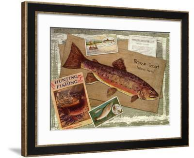Brown Trout-Kate Ward Thacker-Framed Giclee Print