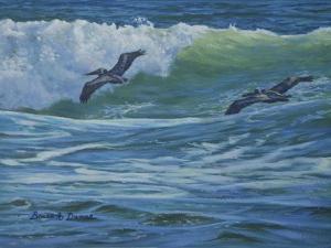 Pelican Skimmers by Bruce Dumas
