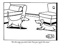 """""""We just need your e-mail address so we can e-mail you all day every day f..."""" - New Yorker Cartoon-Bruce Eric Kaplan-Premium Giclee Print"""