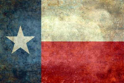 Texas State Flag by Bruce stanfield