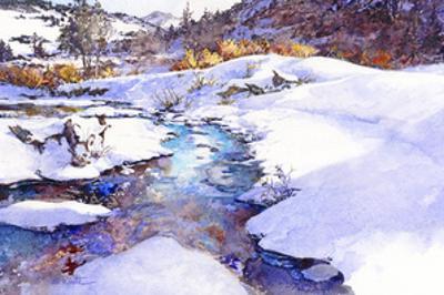 Deer Creek Bend - Colorado