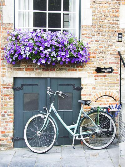 Brugge Door and Bicycle-George Johnson-Photographic Print