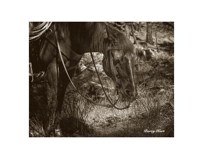 Brunch-Barry Hart-Art Print