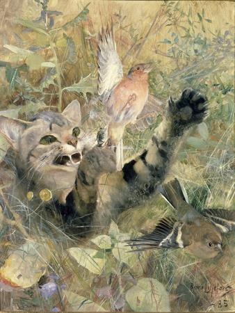 A Cat and a Chaffinch, 1885