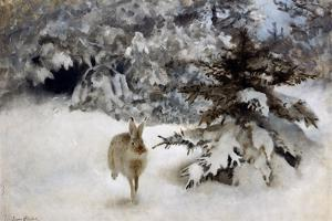 A Hare in the Snow, 1927 by Bruno Andreas Liljefors