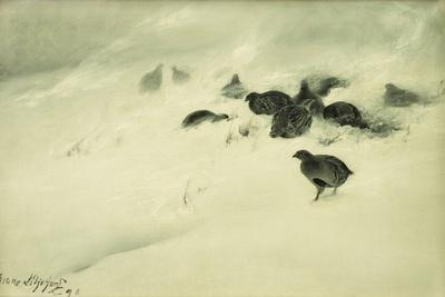 Grouse in a Snow Storm, 1890