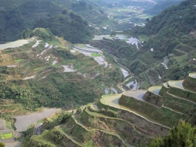 Rice Terraces at Banaue, Unesco World Heritage Site, Northern Region, Island of Luzon, Philippines by Bruno Barbier
