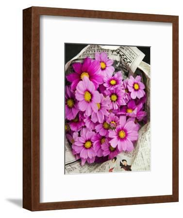 Bouquet of Cosmos Flowers