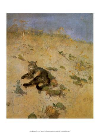 Cat Basking in the Sun, 1884