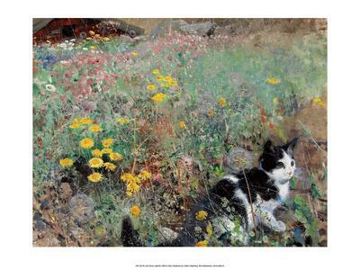 Cat on a Flower Bed, 1887