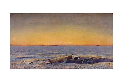 'Sunrise', 1896