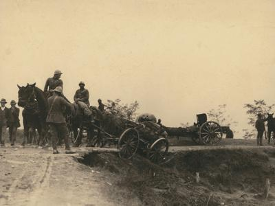 First World War: the Battle of the Piave