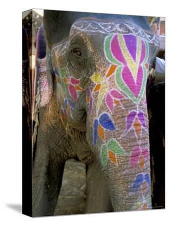 Decorated Elephant at the Amber Fort, Jaipur, Rajasthan State, India