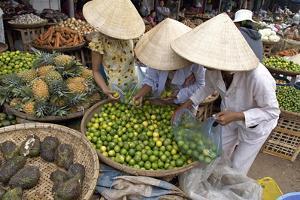 Dong Ba Market, Hue, Vietnam, Indochina, Southeast Asia, Asia by Bruno Morandi