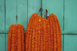 Door, Padlock and Flower Garlands, Kolkata (Calcutta), West Bengal, India, Asia by Bruno Morandi