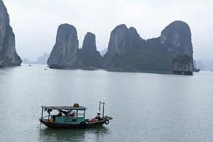 Halong (Ha Long) Bay, UNESCO World Heritage Site, Vietnam, Indochina, Southeast Asia, Asia by Bruno Morandi