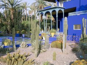 Jardin Majorelle, Marrakech (Marrakesh), Morocco, North Africa, Africa by Bruno Morandi