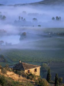 Montalcino, Tuscany, Italy by Bruno Morandi