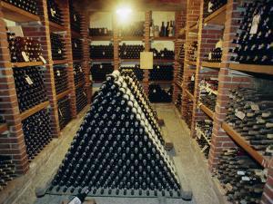 Wine Cellar, Chateau Verrazzano, Chianti, Tuscany, Italy, Europe by Bruno Morandi