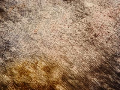 Brush Strokes in Brown Paint--Photographic Print